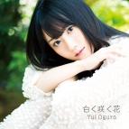 【マキシシングル】小倉唯/白く咲く花 期間限定盤