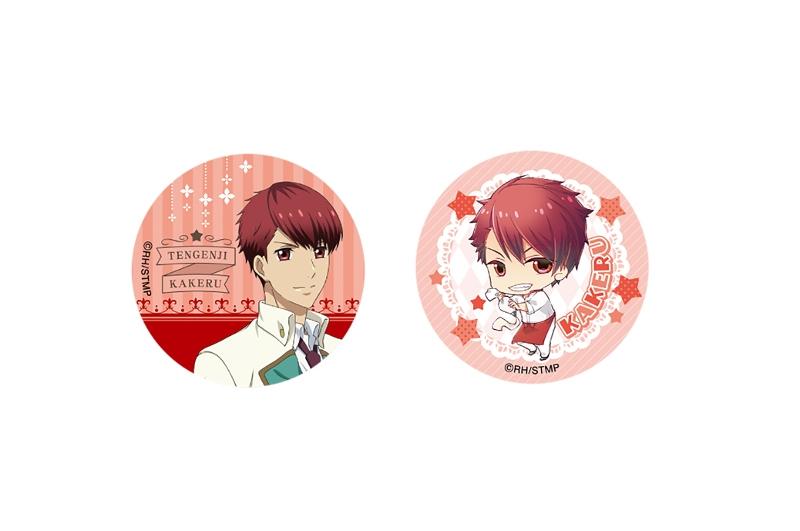 スタミュ -高校星歌劇- 缶バッジセット(きゃらびぃ)/天花寺