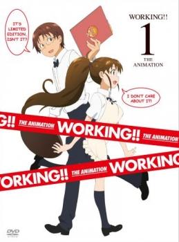 【クリックでお店のこの商品のページへ】【DVD】TV WORKING!! 1 完全生産限定版