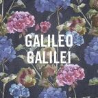 【主題歌】映画 台風のノルダ 主題歌「嵐のあとで」/Galileo Galilei 通常盤