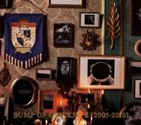 アニメイトオンラインショップ900【アルバム】BUMP OF CHICKEN/BUMP OF CHICKEN II <2005-2010>