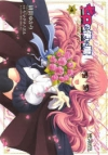 【コミック】ゼロの使い魔 シュヴァリエ(4)