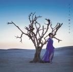 【主題歌】TV ソードアート・オンライン アリシゼーション ED「アイリス」/藍井エイル 通常盤