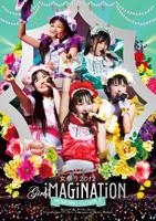 900【DVD】ももいろクローバーZ/ももクロ 秋の二大祭り 女祭り2012