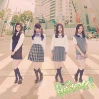 アニメイトオンラインショップ900【マキシシングル】SKE48/賛成カワイイ! Type-C 通常盤