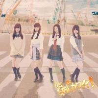 アニメイトオンラインショップ900【マキシシングル】SKE48/賛成カワイイ! Type-D 初回生産限定盤
