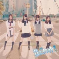 アニメイトオンラインショップ900【マキシシングル】SKE48/賛成カワイイ! Type-B 初回生産限定盤