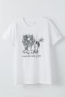 【コスプレ-コスプレアクセサリー】ボーイフレンド(仮) プロジェクト Tシャツ(東雲のライオン)