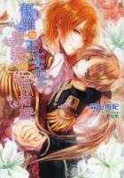 900【小説】優雅な王太子と男装の姫の結婚